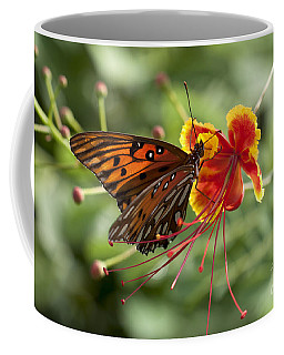 Coffee Mug featuring the photograph Gulf Fritillary Photo by Meg Rousher