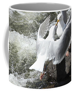 Gull Greeting Coffee Mug