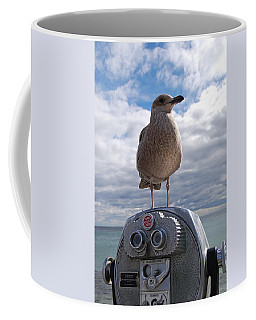 Coffee Mug featuring the photograph Gull by Mim White