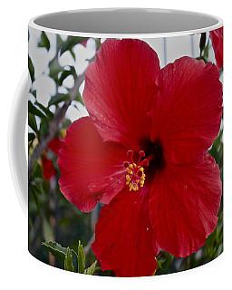 Gumamela2 Coffee Mug