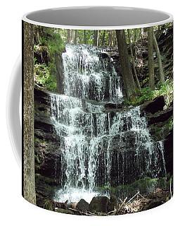 Gun Brook Falls Coffee Mug