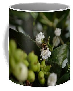 Gypsophilia Hover Fly Coffee Mug
