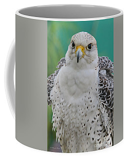 Gyrfalcon Coffee Mug by Deborah Benoit