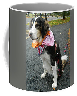Coffee Mug featuring the photograph Haley The Wonder Dog by Emmy Marie Vickers