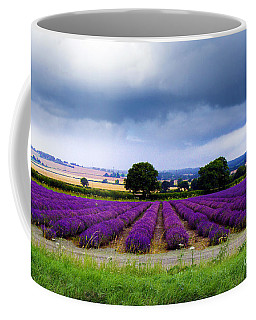 Hampshire Lavender Field Coffee Mug