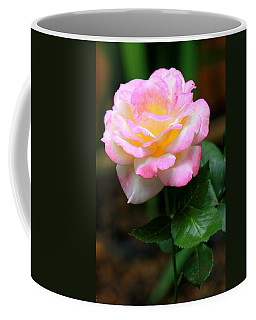 Coffee Mug featuring the photograph Hand Picked For You by Deborah  Crew-Johnson