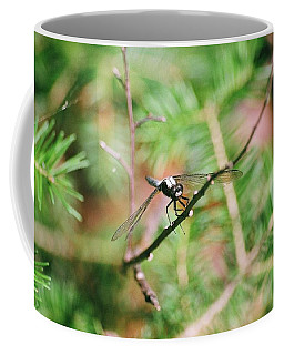 Coffee Mug featuring the photograph Hangin' Out by David Porteus