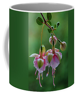 Hanging Fuschia Coffee Mug by Debra Martz