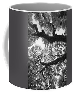 Coffee Mug featuring the photograph Hanging Moss by Bradley R Youngberg