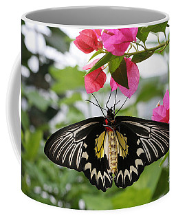 Hanging On Coffee Mug by Judy Whitton