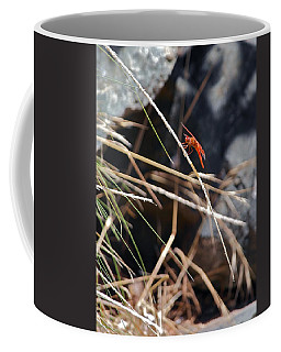 Coffee Mug featuring the photograph Hanging On by Michele Myers