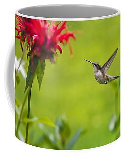 Happiness Hummingbird Garden Coffee Mug
