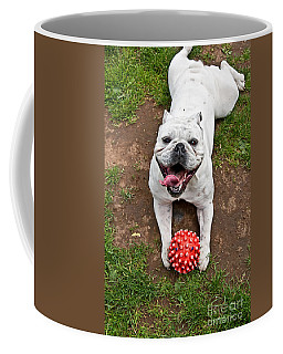Happy Bulldog Lying On Stomach With Red Ball Art Prints Coffee Mug by Valerie Garner