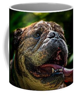 Happy Dog Coffee Mug by Bob Orsillo