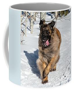 Happy Leonberger Winter Trail Running Coffee Mug