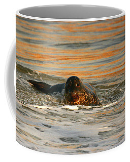 Coffee Mug featuring the photograph La Jolla Seal Sunset by John F Tsumas