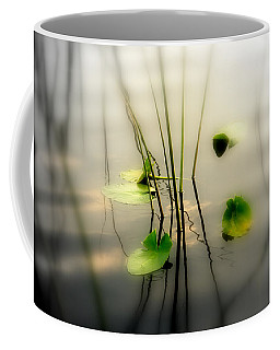 Harmony Zen Photography II Coffee Mug