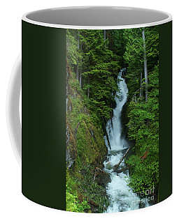 Coffee Mug featuring the photograph Harrison Lake Road Falls by Rod Wiens
