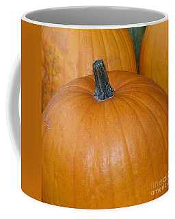 Coffee Mug featuring the photograph Harvest Pumpkins by Chalet Roome-Rigdon