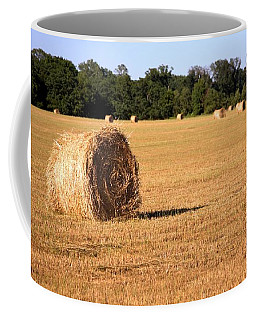 Coffee Mug featuring the photograph Harvest Time by Gordon Elwell