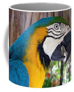 Harvey The Parrot 2 Coffee Mug