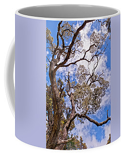 Hawaiian Sky Coffee Mug