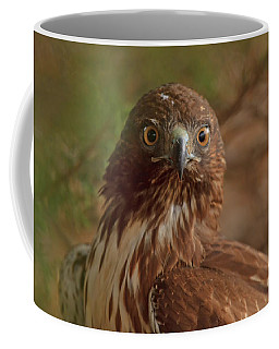 Coffee Mug featuring the photograph Hawk Close Encounter by Beth Sargent