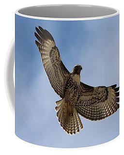 Hawk In Flight  Coffee Mug