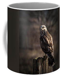 Hawk On A Post Coffee Mug by Randy Hall
