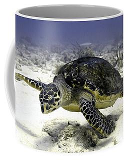 Hawksbill Caribbean Sea Turtle Coffee Mug