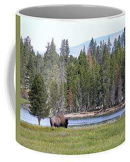 Hayden Valley Bison Coffee Mug by Laurel Powell