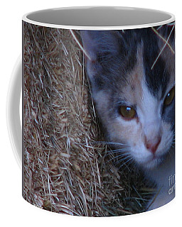 Haystack Cat Coffee Mug by Greg Patzer