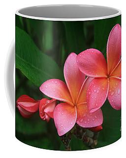 He Pua Laha Ole Hau Oli Hau Oli Oli Pua Melia Hae Maui Hawaii Tropical Plumeria Coffee Mug