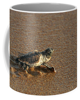 Heading Out To Sea Coffee Mug