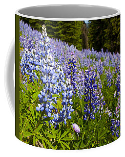 Heavenly Blue Lupins Coffee Mug