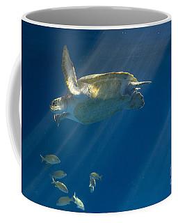 Heavenly Turtle Coffee Mug