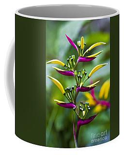 Heliconia Subulata II Coffee Mug