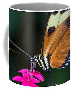 Heliconius Ismenius Coffee Mug