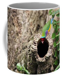 Hello... Anybody Home. Coffee Mug