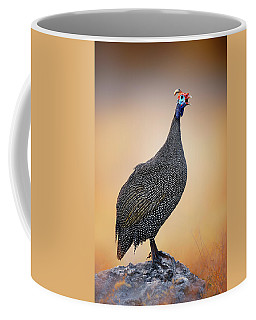 Helmeted Guinea-fowl Perched On A Rock Coffee Mug