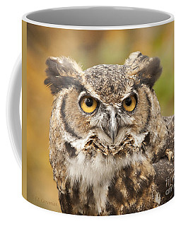 Here's Looking At You Coffee Mug