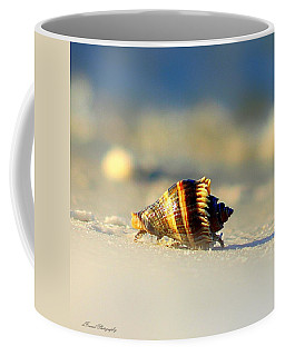 Hermit Crab  Coffee Mug by Debra Forand