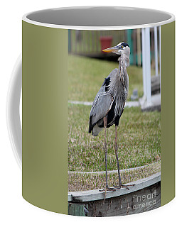 Coffee Mug featuring the photograph Heron On The Edge by Debbie Hart
