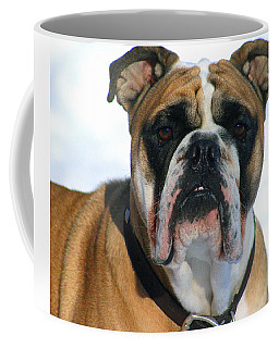 Coffee Mug featuring the photograph Hey Good Looking by Kay Novy