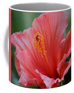 Hibiscus Beauty Coffee Mug