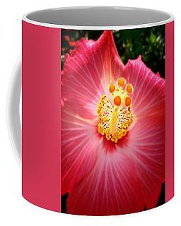 Hibiscus Highland  Coffee Mug
