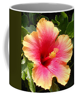 Hibiscus Coffee Mug by Kay Gilley