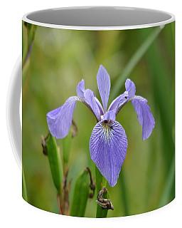 Hidden Companions Coffee Mug