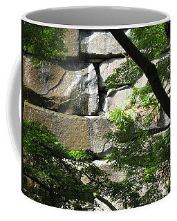 Hidden Waterfall Coffee Mug by David Trotter