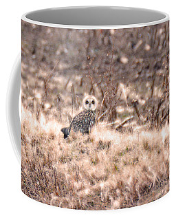 Hiding In Plain Sight Coffee Mug